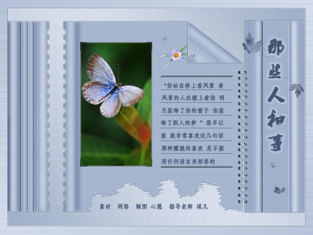彩翼小图1.jpg