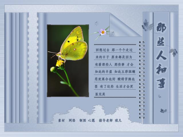 彩翼小图2.jpg